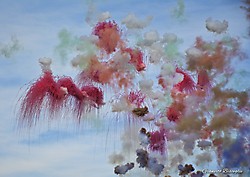 Dipinti nel cielo...